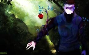 Картинка дерево, яблоко, ветка, Naruto, ninja, sensei, чакра, Naruto Shippuden, Captain Yamato, повязка на лоб