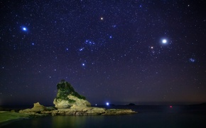 Картинка дерево, море, ночь, небо, звезды, камни, созвездия