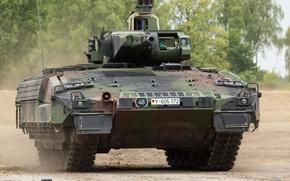 Картинка бронированная, пехоты, машина, германская, боевая, Пума, Schützenpanzer