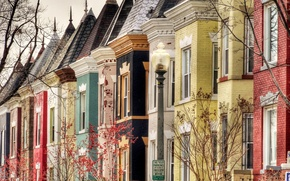 Картинка деревья, улица, окна, здания, дома, крыши, фонарь, Вашингтон, USA, США, Washington, черепица, Колумбия, Bloomingdale
