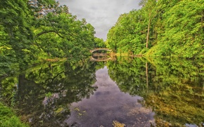 Картинка лес, небо, деревья, мост, озеро, парк, река
