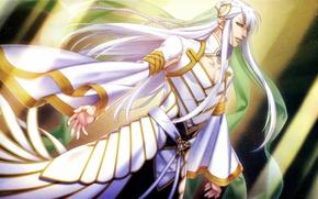 Картинка лучи, сияние, магия, костюм, пояс, длинные волосы, art, жрец, visual novel, Kamigami no Asobi, Игры …