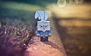 Картинка злой, хмурый, ниндзя, коробочка, кролик, ninja, картон