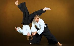 Картинка Ivashkin, Aikido, ntgfa