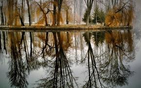 Картинка осень, деревья, озеро