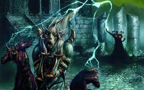 Картинка World of Warcraft, Blizzard, Trading Card Game, Чернокнижник, Помешательство