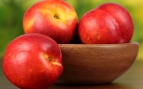 Картинка тарелка, фрукты, персики, нектарин