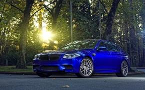 Картинка деревья, синий, BMW, БМВ, f10, monte carlo blue, солнце блик