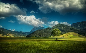 Обои Швейцария, домики, горы, дерево, поле, облака, HDR, трава, лес