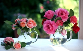 Картинка цветы, розы, окно, кувшины