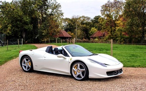 Картинка белая, Ferrari, 458, лужайка, Spider