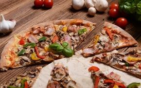 Картинка зелень, грибы, перец, пицца, помидоры, оливки, колбаса, чеснок, начинка