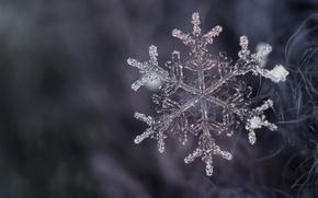 Картинка кристалл, снег, снежинка