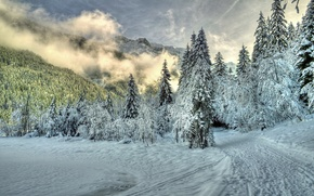 Картинка горы, снег, природа, зима, туман, деревья, тропа, облака, лес