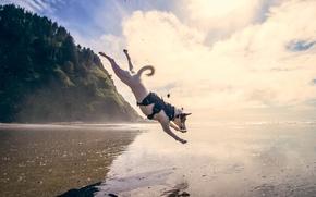Картинка море, вода, собака, прыжок