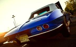 Обои Chevrolet Corvette, Sting Ray