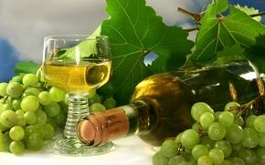 Обои бутылка, виноград, вино, гроздь, бокал