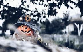 Картинка фон, Halloween, тыква
