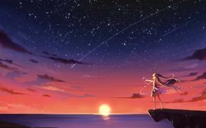 Картинка небо, девушка, солнце, звезды, облака, закат, чайки, аниме, арт, vocaloid, hatsune miku, kyuri