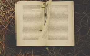 Картинка grass, book, novel