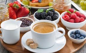 Обои ягоды, малина, завтрак, черника, клубника, fresh, ежевика, coffee, cream, berries, breakfast, jem