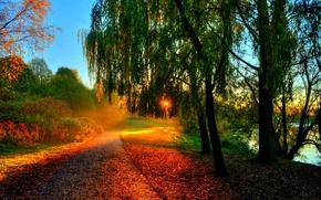Картинка rays, river, hdr, bench, скамейка, leaves, листья, sunset, trees, вода, walk, солнце, река, осень, лес, ...