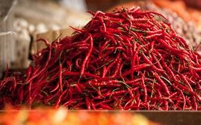 Картинка красный, перец, много, овощ, чили, рынок, базар, Малазия