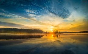 Картинка деревья, закат, природа, озеро, река, Yellowstone National Park