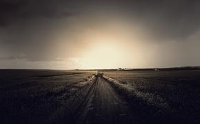 Картинка дорога, поле, небо, трава, солнце, облака, свет, пейзаж, природа, grass, road, sky, field, landscape, nature, ...