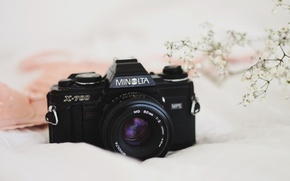 Картинка фон, камеры, Minolta