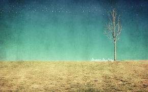 Картинка поле, дерево, текстура