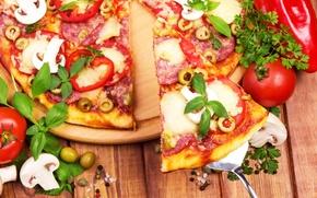 Картинка оливки, перец, sausage, cheese, пицца, tomato, сыр, pizza, колбаса, помидор, специи, spices, грибы, pepper