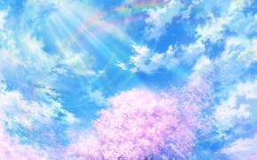 Обои ветер, рисунок, свет, облака, сакура
