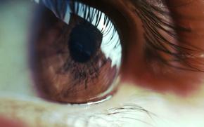 Картинка глаз, ресницы, зрачок