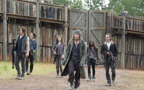 Обои Ходячие мертвецы, герои, The Walking Dead, группа
