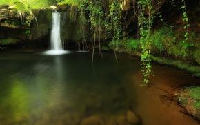Обои водопад, природа, лес, ручей