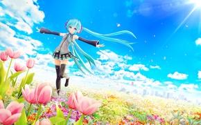 Картинка поле, солнце, облака, цветы, ветер, лепестки, арт, девочка, тюльпаны, vocaloid, hatsune miku, chuukarudoruhu