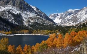 Картинка осень, снег, деревья, горы, озеро, листва