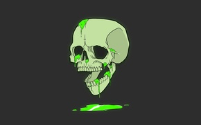 Картинка Минимализм, Череп, Юмор, Обои, Чёрный, Арт, Зелёный, Green, Black, Skull, Wallpaper, Minimalism, Humor, Antonian Aleksandr