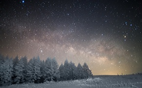 Картинка космос, звезды, снег, деревья, ночь, пространство, млечный путь