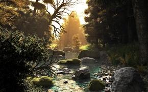Обои лес, деревья, закат, природа, река, ручей, камни, арт, речка