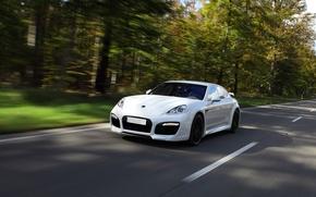 Картинка дорога, белый, скорость, Porsche, Деревя