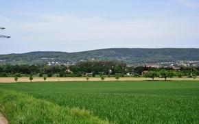 Картинка green, hills, spring