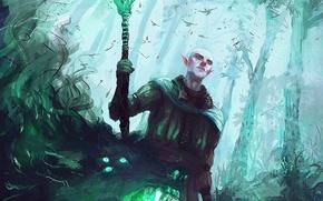 Картинка эльф, маг, dragon age, Dragon Age: Inquisition, solas