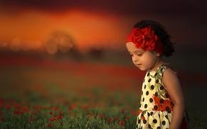 Обои девочка, повязка, настроение, цветы, луг