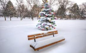 Картинка зима, небо, шарики, снег, деревья, парк, праздник, коллаж, елка, скамья