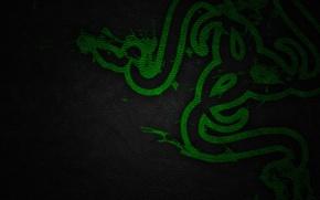 Картинка Green, Black, Logo, Razer, Wallpaper, Hi-Tech, Texture, Leather