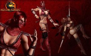 Картинка девушка, мечи, Mortal Kombat, катаны, красные волосы, Skarlet