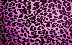 Картинка Леопард, Розовый, Текстура