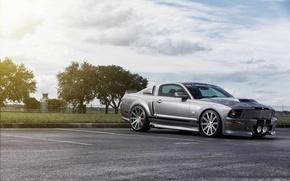 Картинка Mustang, Ford, muscle car, silvery, обвес, 550R